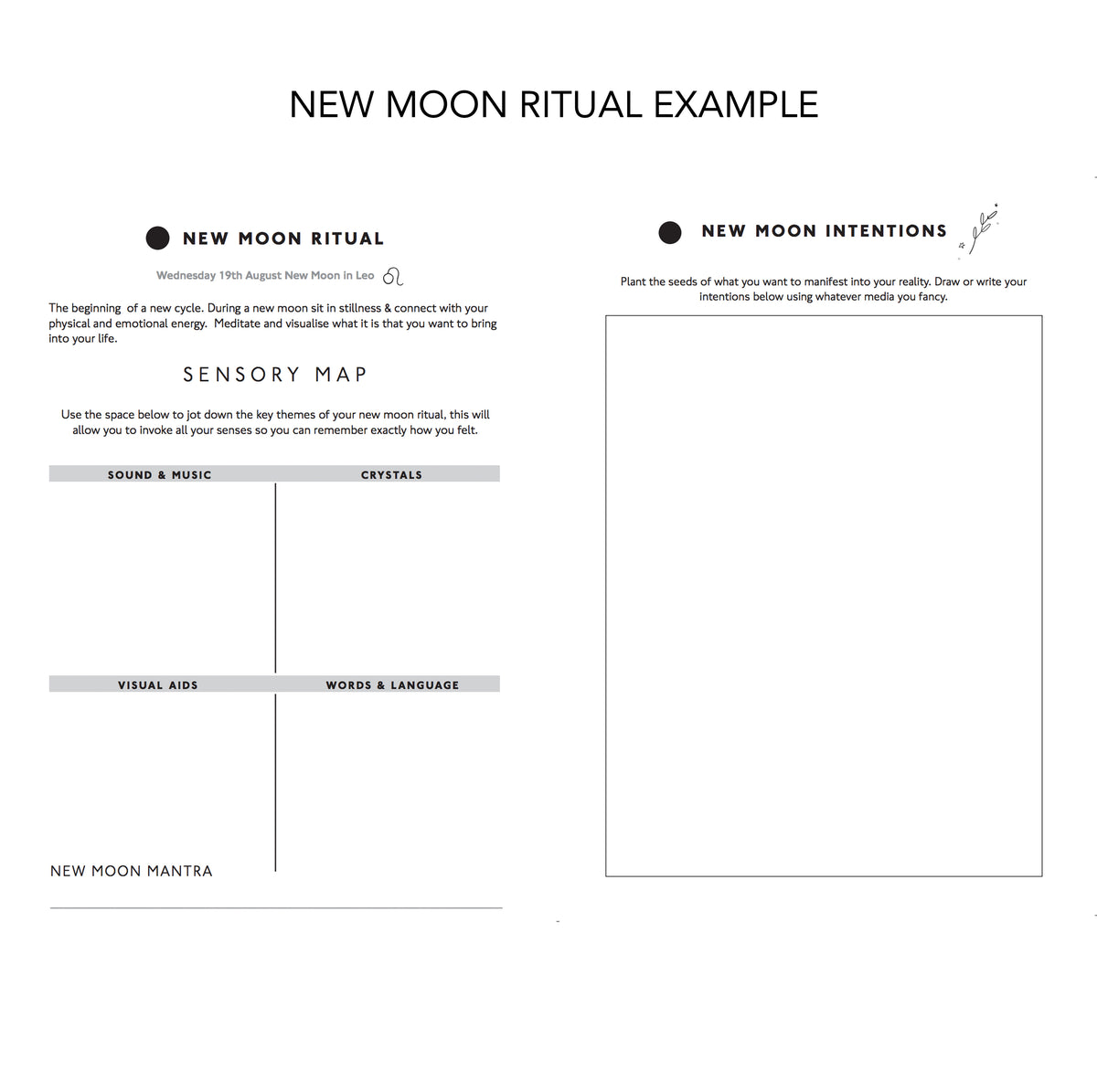 Moon Diary lunar cycle  Mid year diary ( 2020-2021)