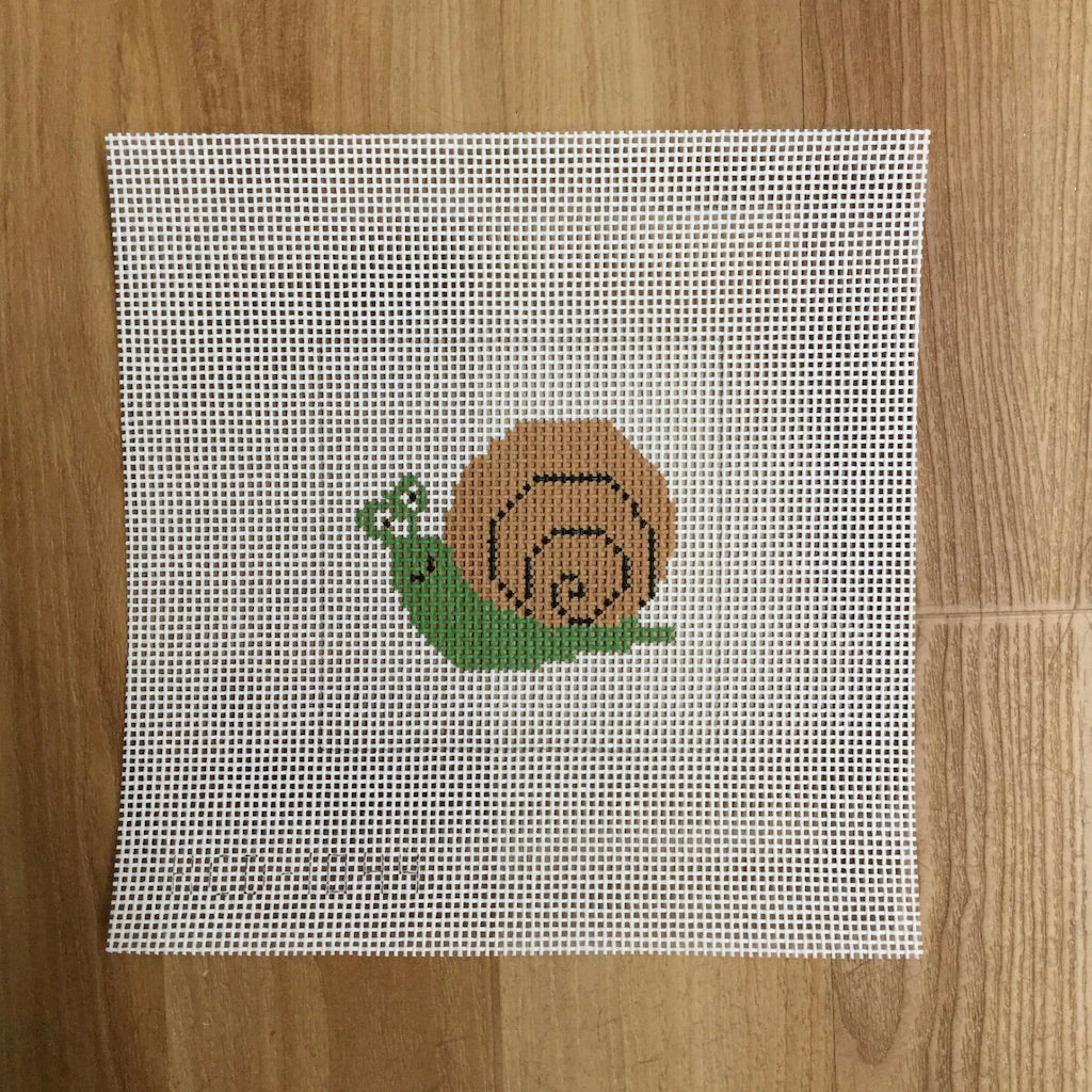 Snail  Beginner Canvas