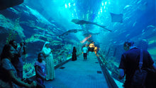 Burj Khalifa and Dubai Aquarium