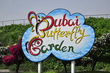 Spread across more than 4,500 square metres, Dubai's first butterfly garden is located in the Miracle Garden, near Arabian Ranches. Around 35,000 diverse species of butterflies are housed in nine custom-built domes. The unique project is part of the Dubai Safari scheme and also includes an international garden showcasing famous world landmarks made entirely from plants and flowers.