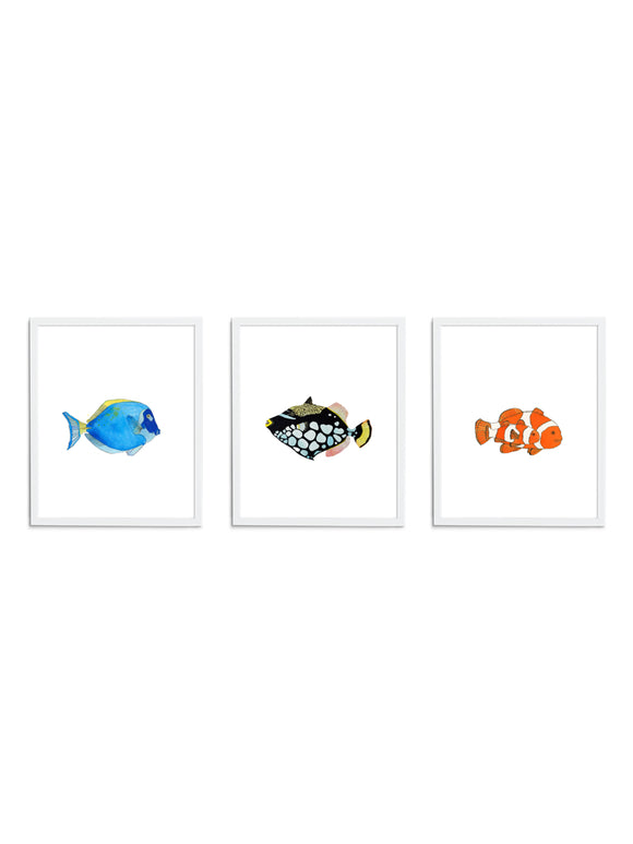 Three Fish Gift Set - Wee Wild Ones - Art Prints
