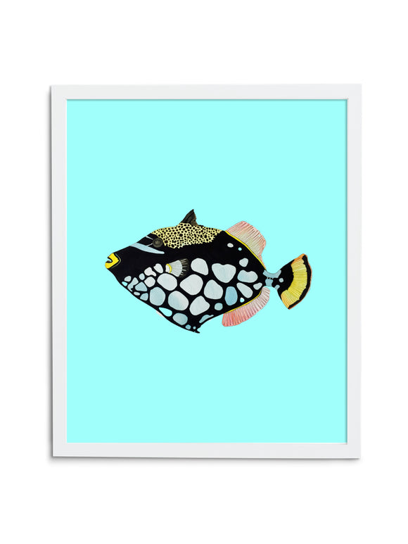 Triggerfish—Blue - Wee Wild Ones - Art Prints