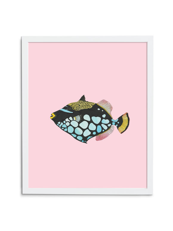 Triggerfish—Pink - Wee Wild Ones - Art Prints