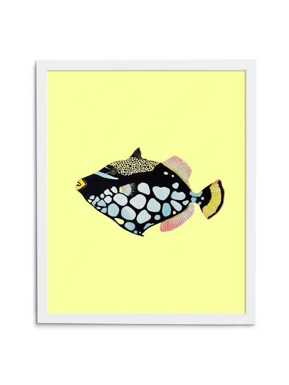 Triggerfish—Yellow - Wee Wild Ones - Art Prints