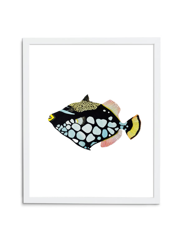 Triggerfish—White - Wee Wild Ones - Art Prints