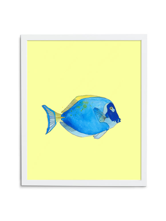 Regal Tang—Yellow - Wee Wild Ones - Art Prints