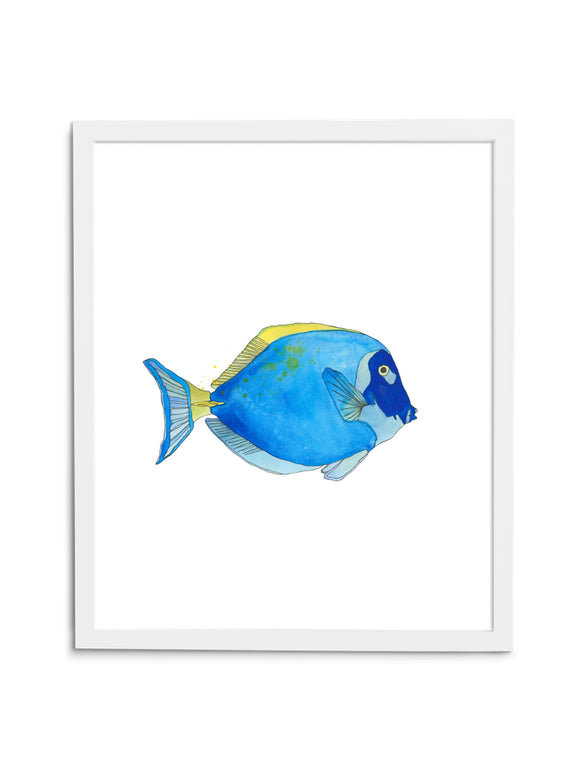 Regal Tang—White - Wee Wild Ones - Art Prints