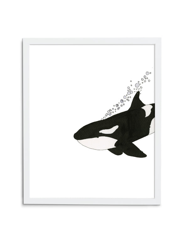 Orca—White - Wee Wild Ones - Art Prints