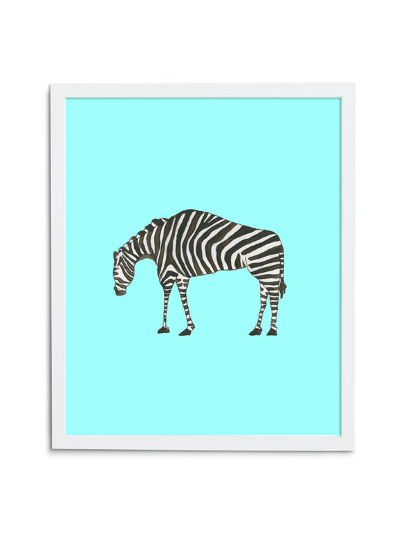 Zebra Baby—Blue - Wee Wild Ones - Art Prints