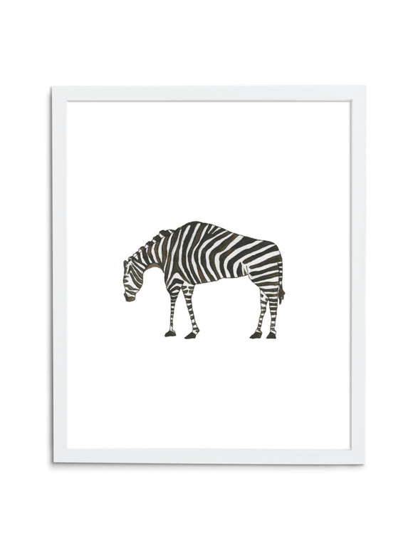 Zebra Baby—White - Wee Wild Ones - Art Prints