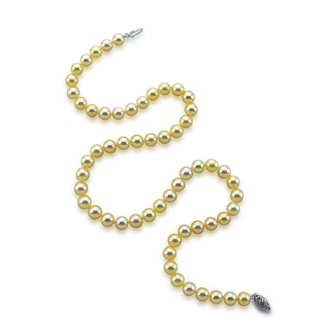 "14k White Gold 6.0-6.5mm Golden Akoya Cultured Pearl High Luster Necklace 18"", AAA Quality."