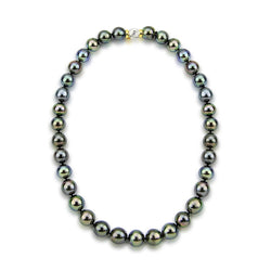 "11-13mm Black Tahitian Cultured Pearl Necklace 17.5"" AAA Quality with 14K Yellow and White Gold Clasp"