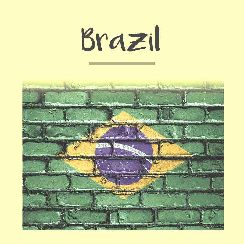 Brazil Passport Photo - Tomamor DIY Passport Visa Photo