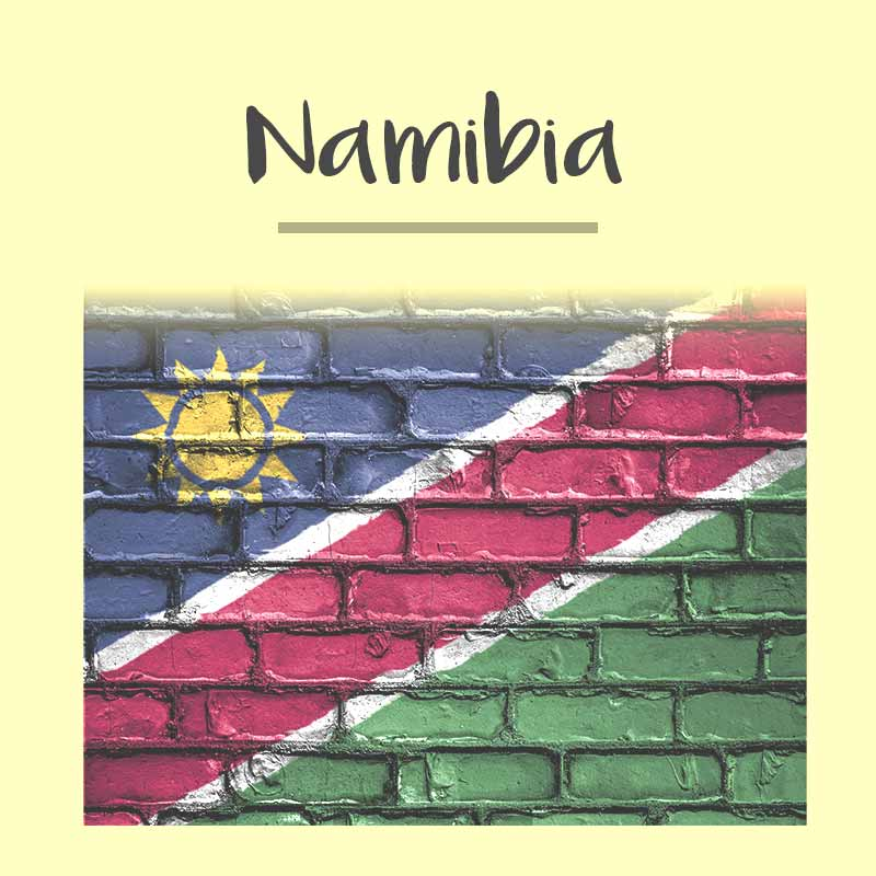 Namibia Visa Photo - Tomamor DIY Passport Visa Photo