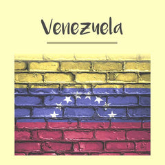 Venezuela Visa Photo - Tomamor DIY Passport Visa Photo