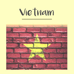 Vietnam Visa Photo - Tomamor DIY Passport Visa Photo
