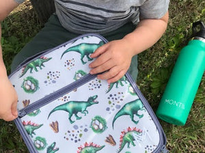 Insulated Lunch Bag - Dinosaur - Little ones kingdom