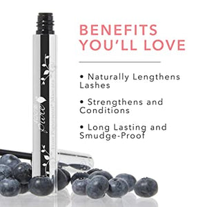 100% Pure Fruits Pigmented Ultra Lengthening Mascara Blueberry