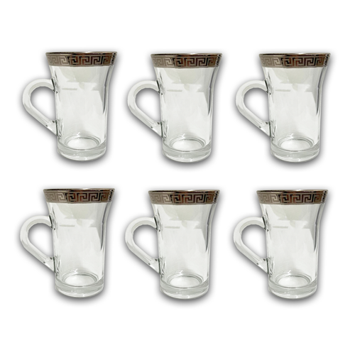 6 PCS GLASS CUPS (VERSACE INSPIRED DESIGN) -SILVER W/ HANDLE
