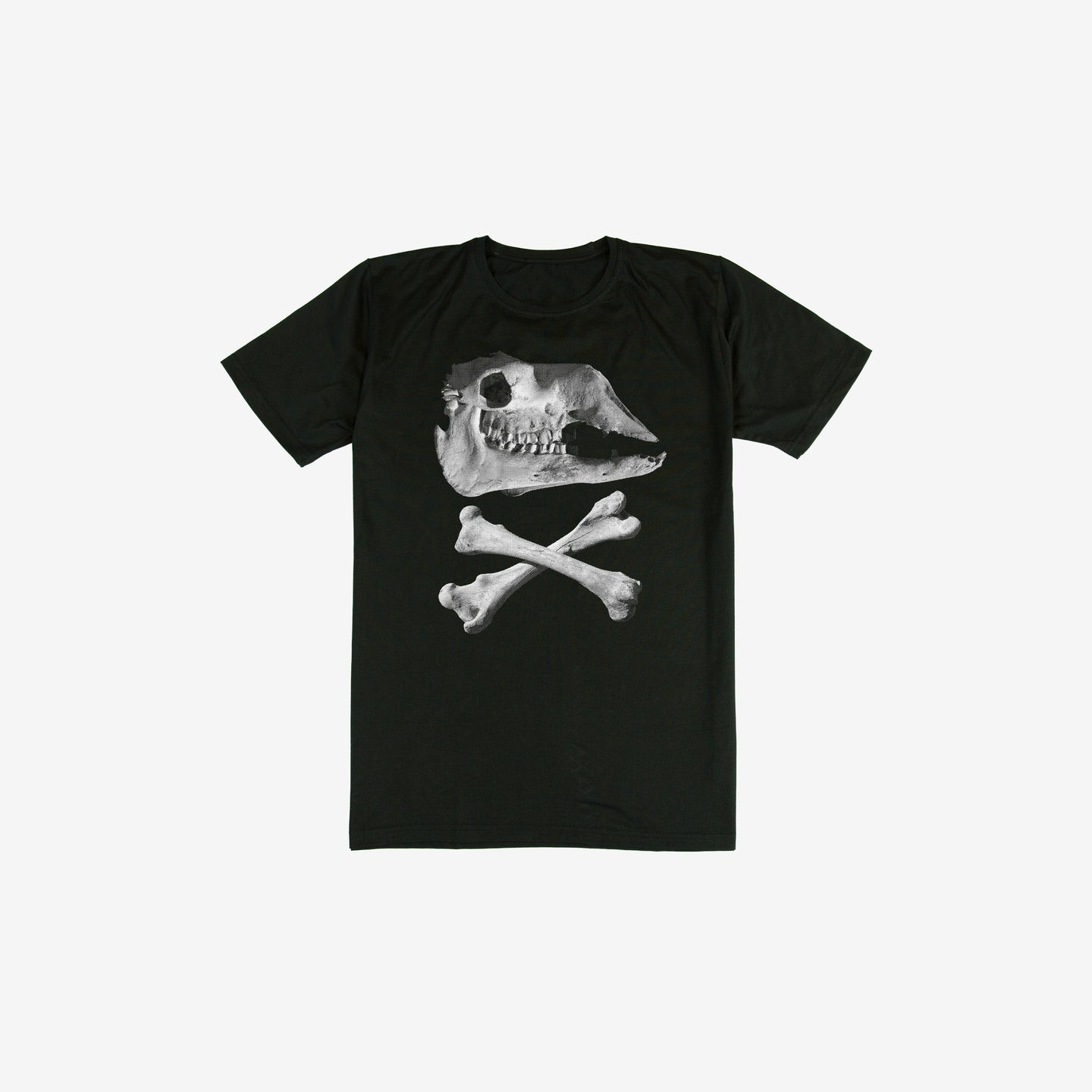 Camel Skull T-Shirt (Kids Sizes)