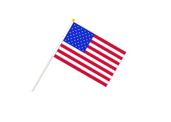 100pcs Mini American Flags