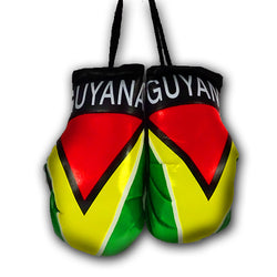 GUYANA MINI BOXING GLOVES