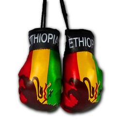 ETHIOPIA MINI BOXING GLOVES