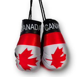 CANADA MINI BOXING GLOVES