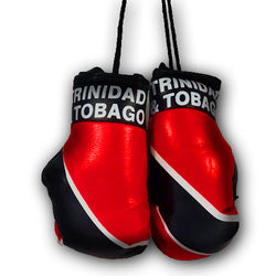 TRINIDAD & TOBAGO MINI BOXING GLOVES