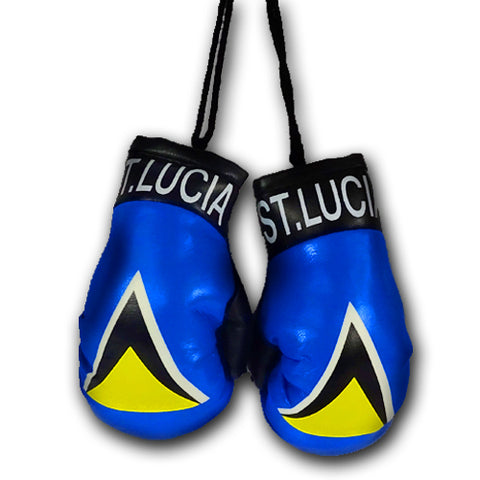 ST LUCIA MINI BOXING GLOVES
