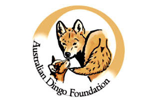 Australian Dingo Foundation