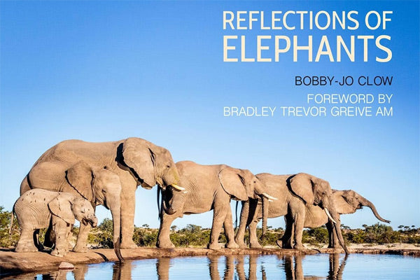 Reflections of Elephants
