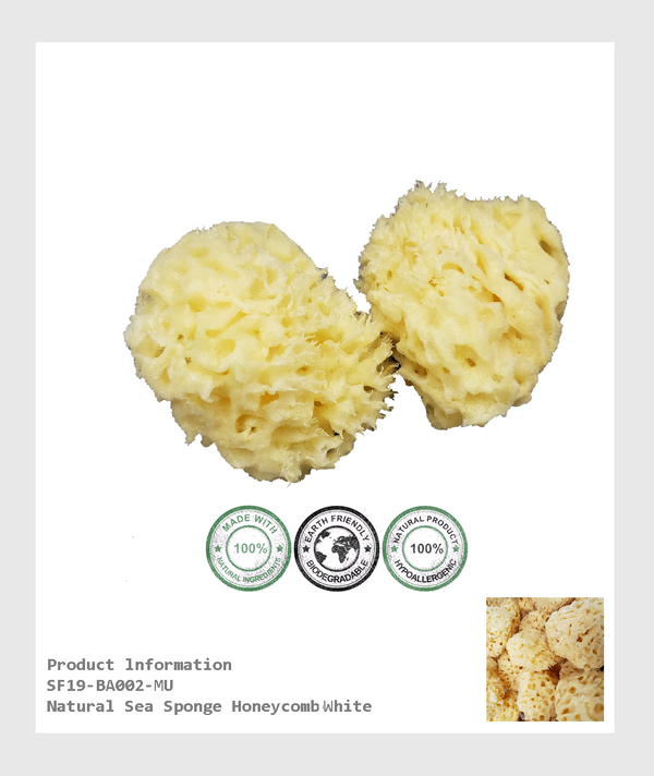 SF19-BA002MU - 100% organic hypoallergenic and toxin-free Natural sea sponge Honeycomb white  (Size 3-3.5*inch)/100%有機低過感性,無毒素天然蜂窩狀海棉-原白色(尺寸3-3.5 *英寸)