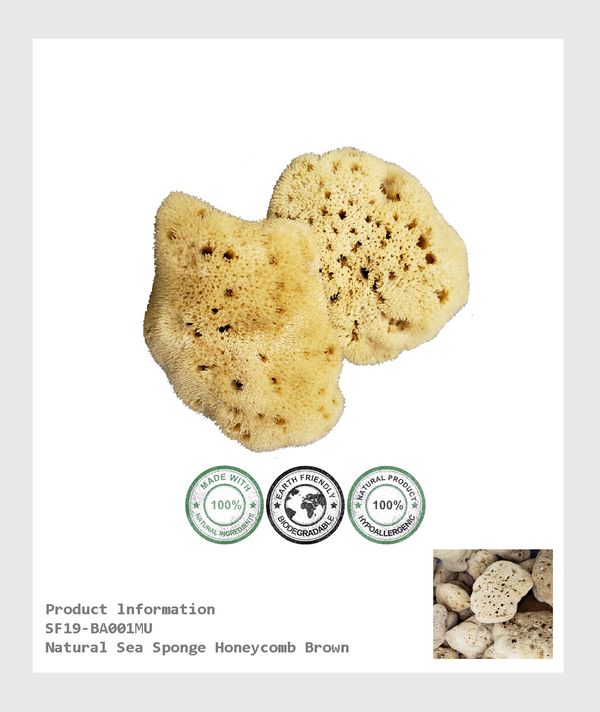 SF19-BA001MU - 100% organic hypoallergenic and toxin-free Natural sea sponge Honeycomb brown(Size 3.5-4*inch)/100%有機低過感性,無毒素天然蜂窩狀海棉-棕色(尺寸3.5-4 *英寸)