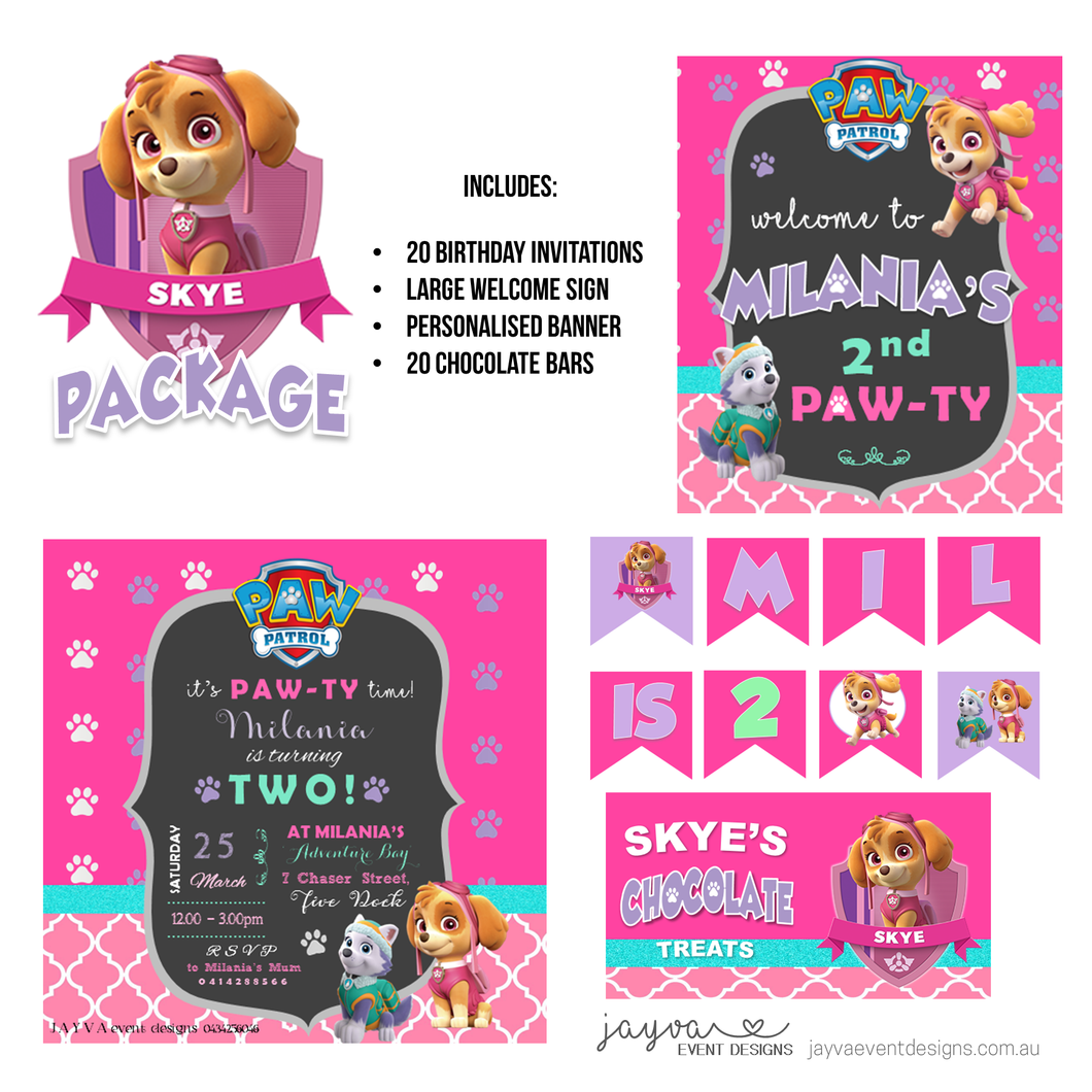 Skye - Paw Patrol Party Pack