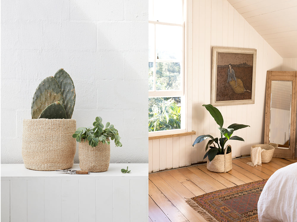 Indoor plant jute baskets