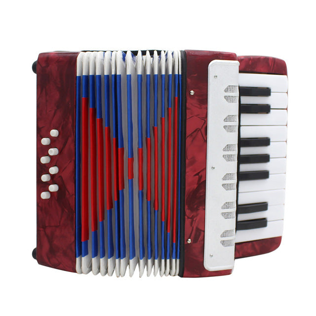 IRIN Professional Mini 17 Key Accordion Educational Keyboard Musical Instrument for Both Kids & Adult