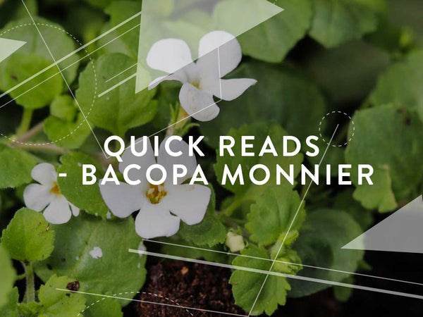 Quick reads - Bacopa Monnieri