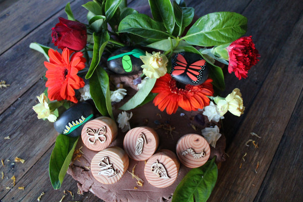 Beadie Bug Play - Play Dough Stamps - Butterfly Life Cycle