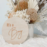 Hello Fern Gender Announcement Disc - Boy - Classic