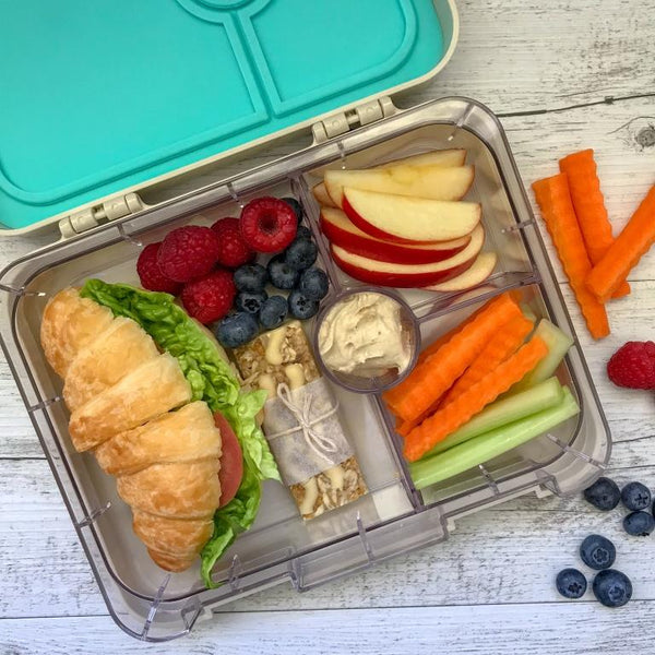 My Family Easy Clean Bento Box - Shark