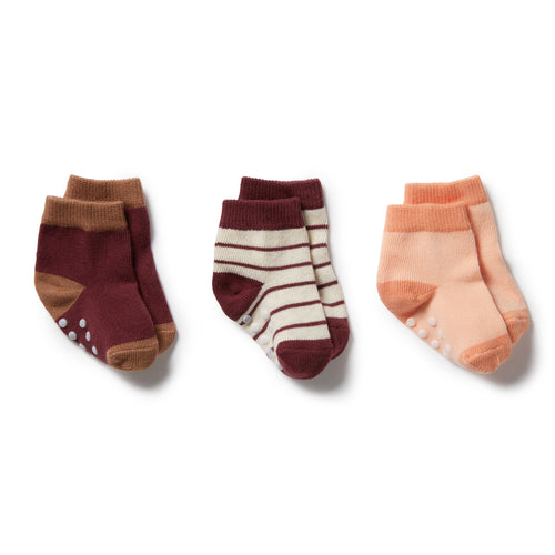 Wilson & Frenchy 3 Pack Baby Socks - Flamingo - Wild Ginger - Burro