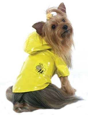 Cha-Cha Couture Bumble Bee Raincoat