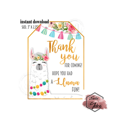 "INSTANT DOWNLOAD- Llama Fun Party Tag- Printable Rectangle Tag-Thank you Llama Theme Tag  3""x 2.25"" Tags DIY Favor Tags-Stickers"