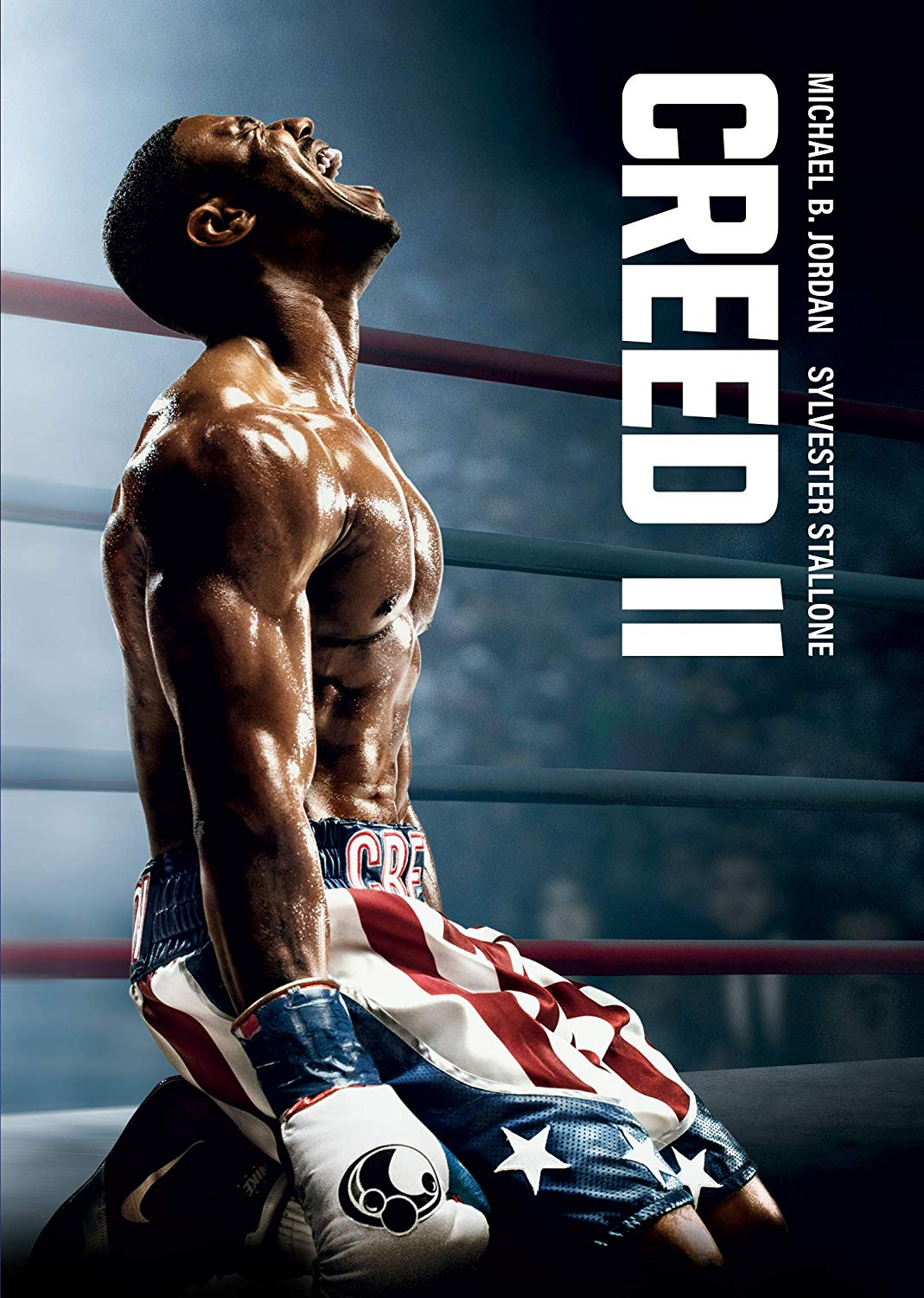 Creed II - Steven Caple Jr. [DVD]