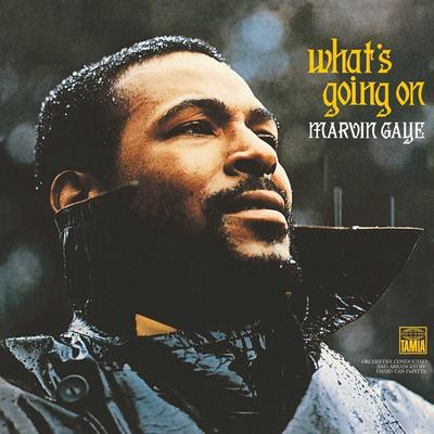 What's Going On - Marvin Gaye [VINYL]