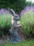 The White Rabbit (From Alice's Adventures in Wonderland) Garden Statue Ornament