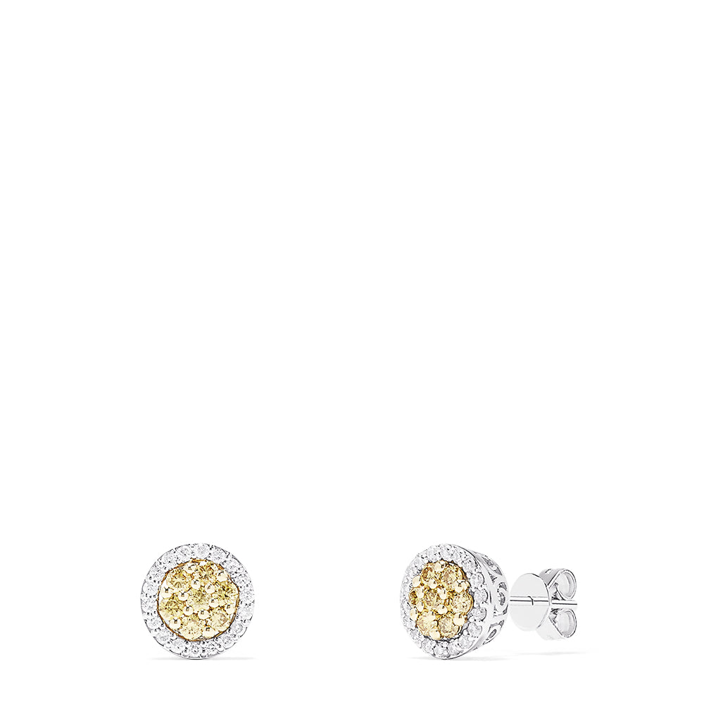 Effy Canare 14K 2-Tone Gold Yellow and White Diamond Earrings, 0.61 TCW