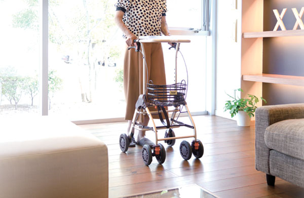 Kowa(Tacao F) Rollator - Walking Car WAW05 テイコブリトルホーム WAW05