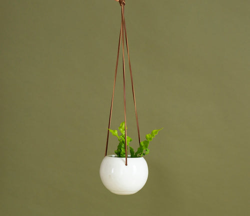 Cecil Hanging Planter